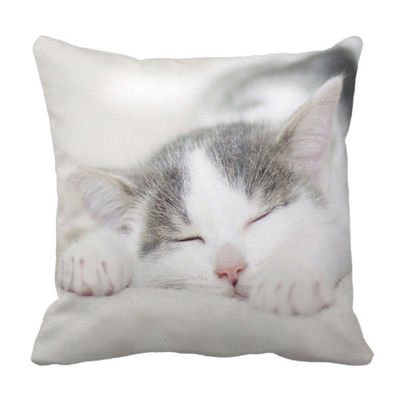 Poduszka KOT Novelty Cat Cushion pod-6185